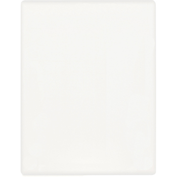 Dry-Erase Mirage Board(TM) - 15 pt